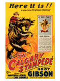 The Calgary Stampede Posters