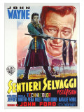 The Searchers, Italian Movie Poster, 1956 高品質プリント