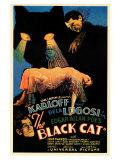 The Black Cat Pôsters