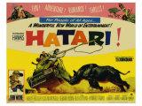 Hatari, 1962 Plakater