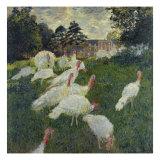 Les Dindons (The Turkeys) Giclée-tryk af Claude Monet