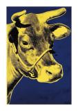Cow, c.1971 (Blue and Yellow) Giclée-Druck von Andy Warhol