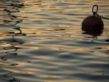 Sunlight Reflected in Rippled Water and a Buoy on Lake Zurich Fotoprint av Annie Griffiths Belt