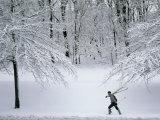 Skier Carries Skis and Poles Through Snow in Schenley Park Fotografisk trykk av Lynn Johnson