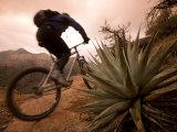 Man Mountain Biking in Sedona Red Rock Country Photographic Print by Dawn Kish