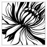 Mini Botanical Sketch II Prints by Ethan Harper