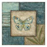 Butterfly Montage II Prints by Chariklia Zarris