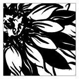 Mini Botanical Sketch VI Prints by Ethan Harper