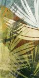 Feuille de palmier II Posters par James Burghardt