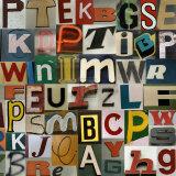 Type II Stampa di Sharon Elphick