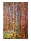 Bosque de abedules Lámina por Gustav Klimt
