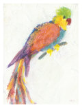 Parrot Extraordinaire Stampa giclée di Flavia Weedn