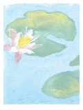 Lily Pads Giclee Print by Flavia Weedn