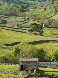 Traditional Barns and Dry Stone Walls in Swaledale, Yorkshire Dales National Park, England Reproduction photographique par John Woodworth