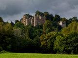 Dunster Castle, Somerset, England, United Kingdom, Europe Reproduction photographique par Charles Bowman