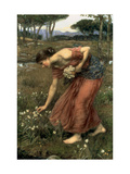 Narcissus, 1912 Giclée-tryk af John William Waterhouse