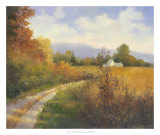 Autumn Country Road Reproduction procédé giclée par Mary Jean Weber