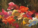 Poppies in Sunshine Poster von Leon Roulette
