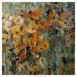 Amber Poppy Field II Print by Tim