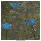 Teal Poppies II Arte por Ricki Mountain