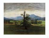 The Lonely Tree Keräilyvedos tekijänä Caspar David Friedrich
