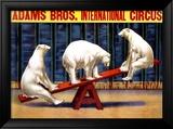 Adams Brothers Circus Lámina giclée enmarcada