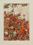 Floral Field Impressão colecionável por Egon Schiele