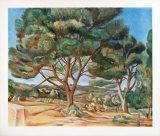 The Stone Pine Samlarprint av Andre Derain