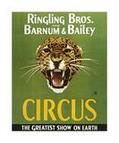 Barnum And Bailey Circus Lámina giclée prémium por  The Vintage Collection