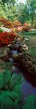 Azaleas in a Garden, Exbury Gardens, New Forest, Hampshire, England Photographic Print