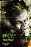 Batman Arkam Asylum Poster