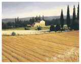 Golden Fields and Cypress Poster van James Wiens