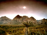 Mojave Desert, Las Vegas, Nevada Posters by  M.N.