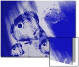 Four-Eye Butterflyfish Swim in the Blue Sea Kunstdrucke von Rich LaPenna