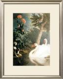 Cygnes Prints by Alexandre-Francois Desportes