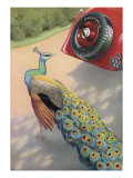 Dunlop Tyre Advertisement, Featuring a Peacock Giclée-Druck