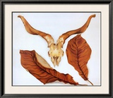 Ram's Skull with Brown Leaves Pôsters por Georgia O'Keeffe