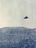 UFOs, Marquand Fotografie-Druck