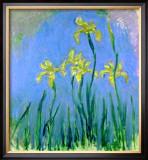 Les Iris Jaunes Pôsters por Claude Monet