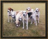 Seven V.W.H. Foxhounds Rajoitettu erä kehystettyjä vedoksia tekijänä Gary Stinton