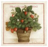 Fraises des Jardins Prints by Vincent Jeannerot