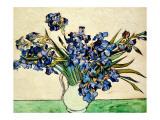 Vase of Irises, c.1890 Giclée-tryk af Vincent van Gogh