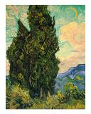 Cypresses, c.1889 Lámina giclée por Vincent van Gogh