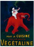 Cuisine Vegetaline Giclée-vedos tekijänä Leonetto Cappiello