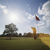 Golfer on the Green Putting Golf Ball into Hole Photographic Print by Dennis Hallinan