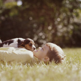 Boy Lying on the Grass Playing with Puppy Photographic Print by Dennis Hallinan