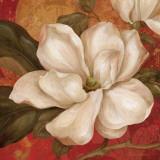 Magnolia on Red II Print by Pamela Gladding