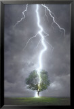 Lightning Striking Tree Posters