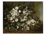 A Branch of Apple Blossoms also Said Cherry Blossoms Giclee Print by Gustave Courbet