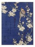 Bouvreuil et cerisier pleureur en fleur Giclée-tryk af Katsushika Hokusai